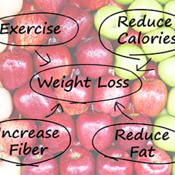 weight_loss_diagram